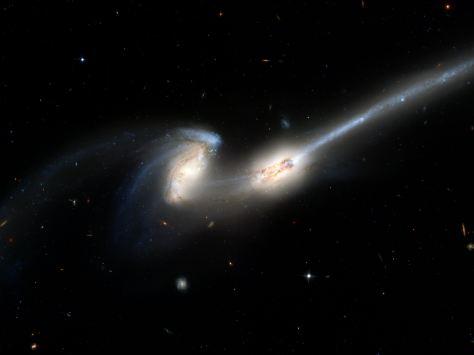 Plan budowy oraz części składowe Wszechświata