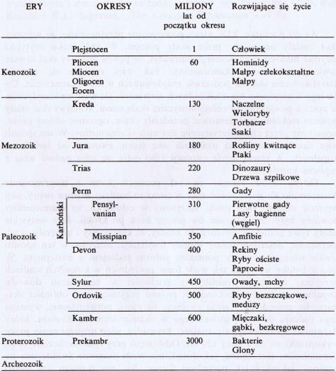 kolumna geologiczna